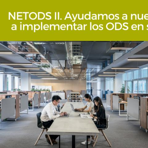 NETODS II